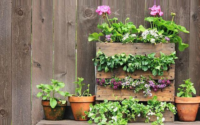 Decoraci n con pallets maceteros for Adornos con plantas en macetas