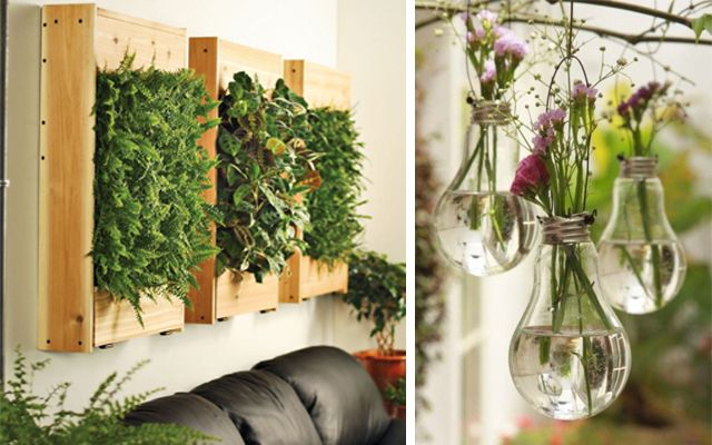 Ideas para decorar con plantas for Decoracion jardin plantas
