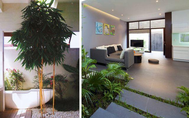 Viviendas con jard n interior for Decoracion de jardines interiores pequenos