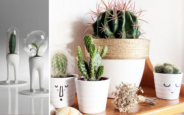 Ideas para decorar con cactus for Cactus decoracion