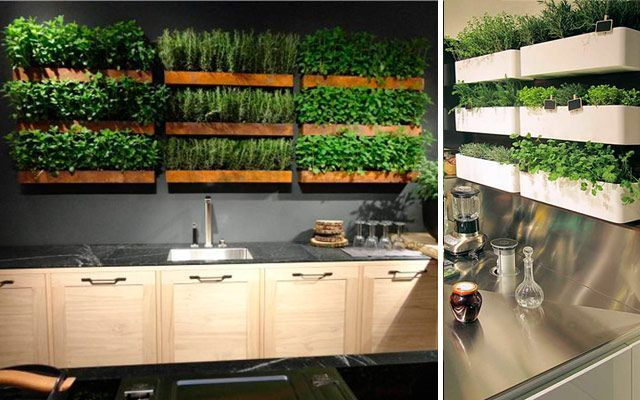 Decorar Con Plantas Y Madera Una Pared De Restaurante