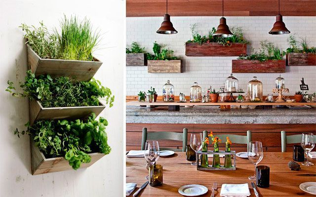 Ideas originales para decorar la cocina con plantas