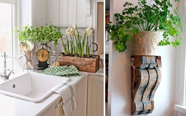 Ideas originales para decorar la cocina con plantas for Como decorar una cocina