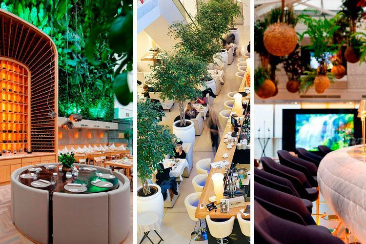 Ideas para decorar restaurantes con plantas for Interiores de restaurantes
