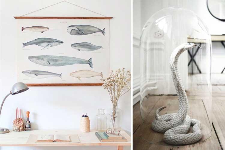 Los animales en el diseño interior