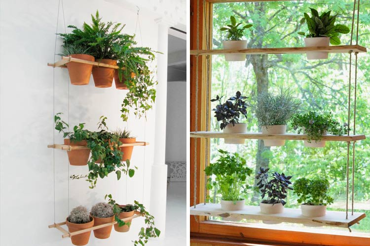 Ideas para decorar con estanter as colgantes for Decoracion de oficinas con plantas