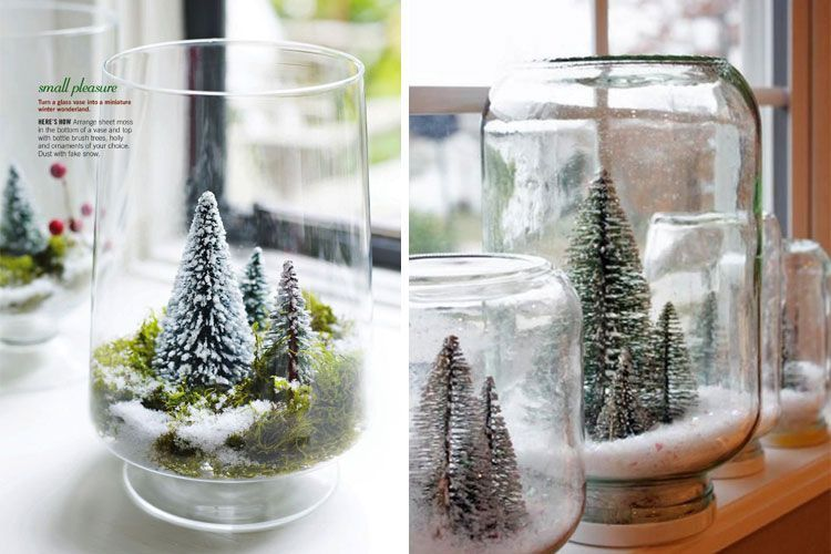 Mini árboles en tarros de cristal