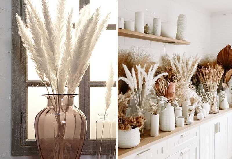 la hierba de la Pampa en la decoración